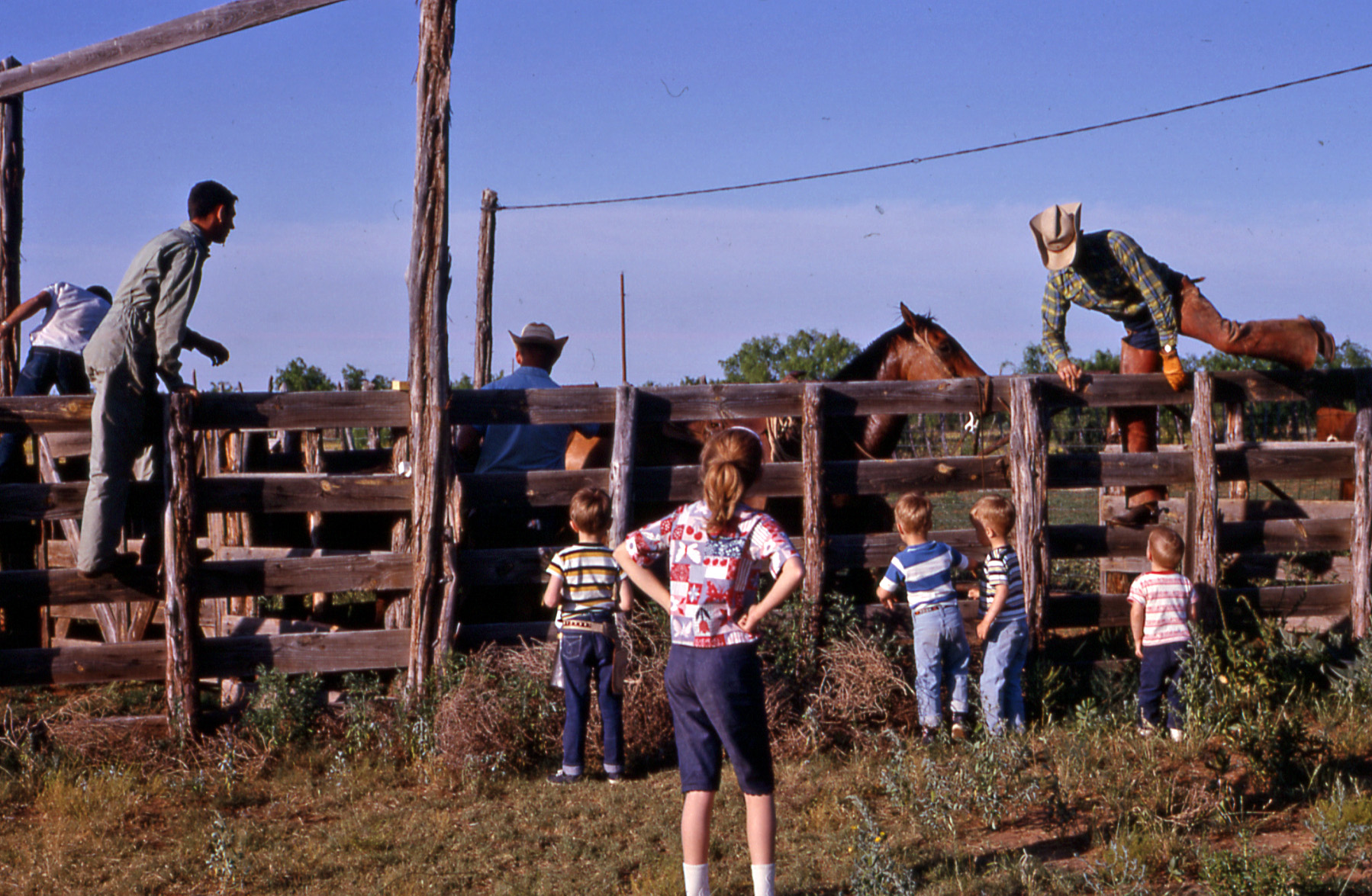 Me and my cousins watching Texas cowboys work cattle. About 1964