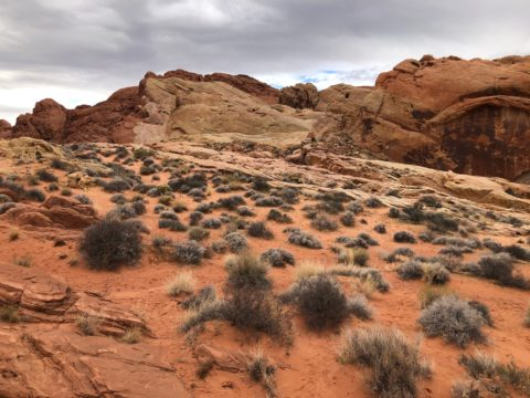 Valley of Fire scene